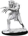 Dungeons & Dragons - Nolzur's Marvelous Unpainted Minis: Troll